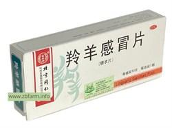 Линян Ганьмао Пянь, Lingyang Ganmao Pian, 羚羊感冒片 отхаркивающий препарат - фото 6151